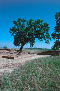 カピラ城東門跡