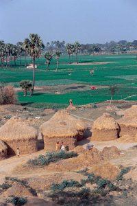 スジャータ村