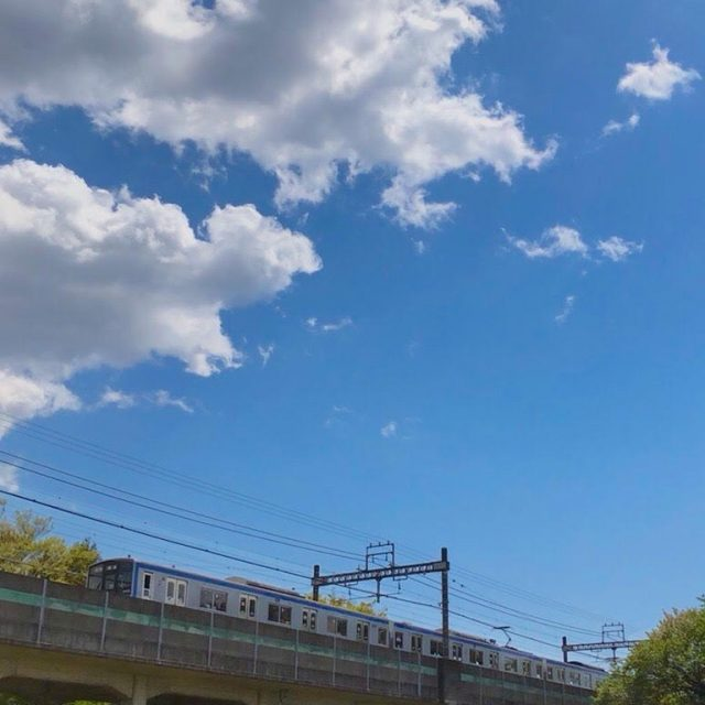 神奈川県横浜市(投稿者:桃鉄子)