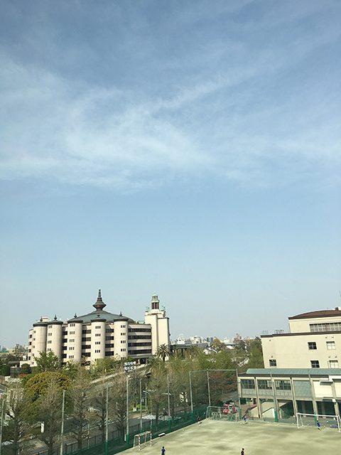 東京都(投稿者:ぽん)