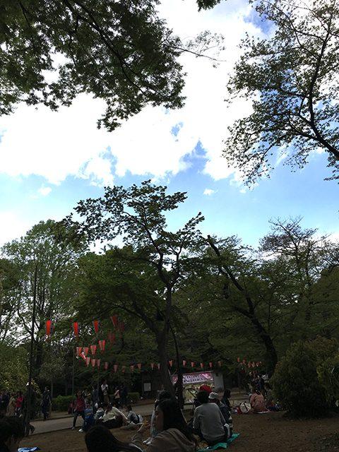 東京都上野公園(投稿者:ぽん)