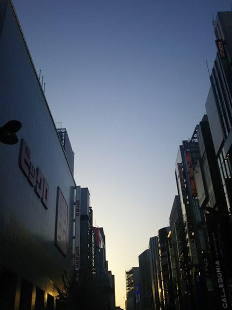 東京新宿(投稿者:tabo)