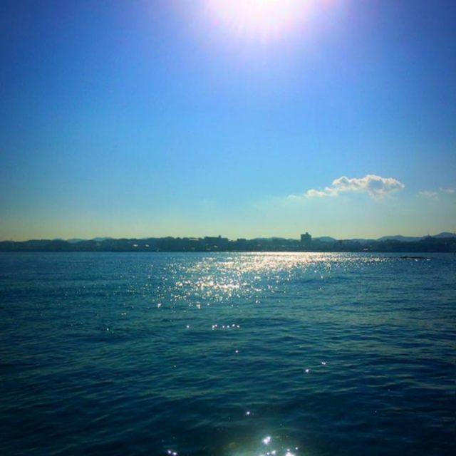 横須賀の海上(投稿者:黄色いバラ)