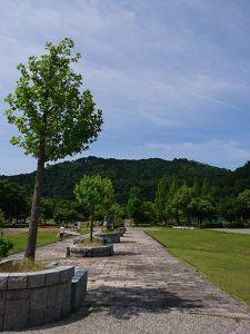 滋賀県彦根市荒神山(投稿者:びわ湖大ナマズ)