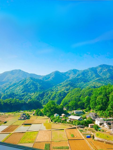 神奈川県・相模湖の先(投稿者:桃鉄子)