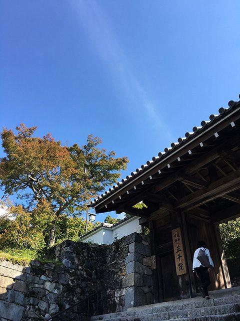 京都三千院(投稿者:ぽん)