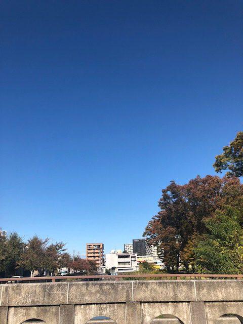 名古屋市 名城公園(投稿者:チャッピー)