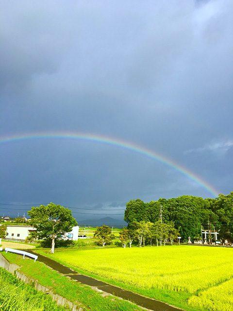 近江八幡市(投稿者:あさチャン)