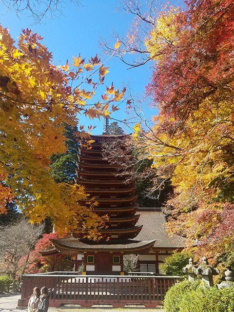 談山神社(投稿者:奈良のトトロ)