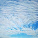 京都市山科区の青空です。(投稿者:古田)