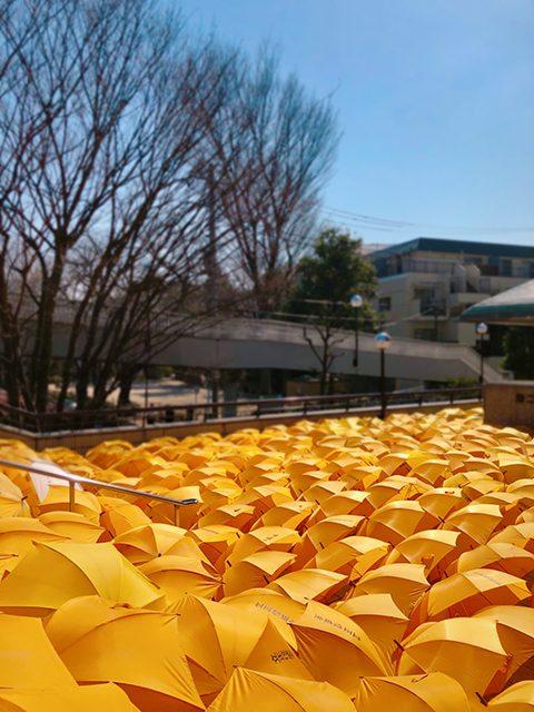 東京都杉並区・第二団参会館(投稿者:おりひめ☆)