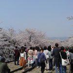 蹴上インクライン(京都教会から徒歩5分)(投稿者:ウエッタ)