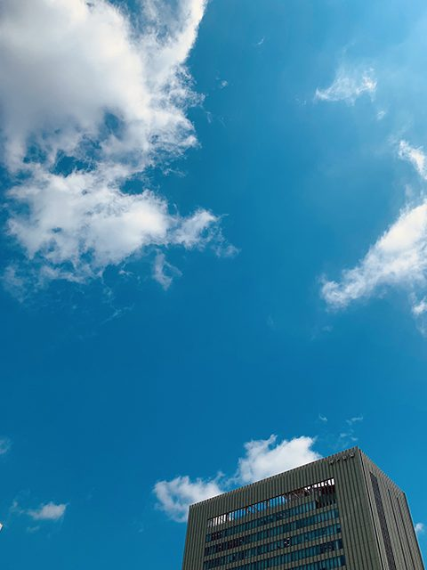 神戸(投稿者:神戸のそごにゃん)