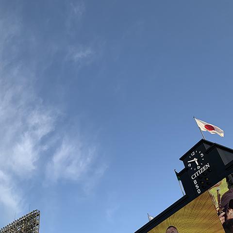 甲子園球場ライトスタンド(投稿者:神戸のそごにゃん)