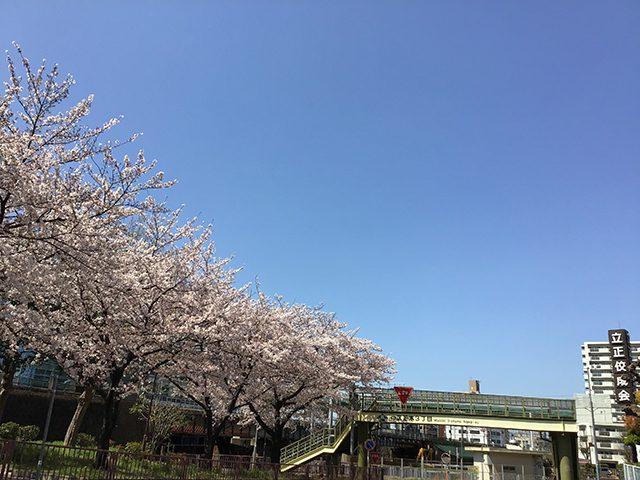 名古屋教会 南側の線路沿い(投稿者:会長先生ありがとうございます)
