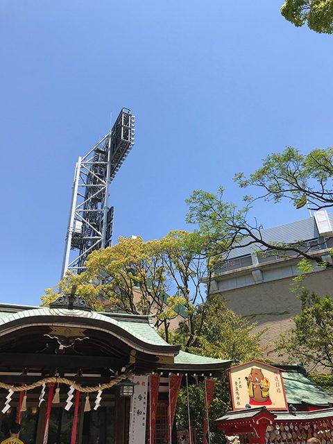 西宮市 素盞嗚神社(投稿者:yoshimi)