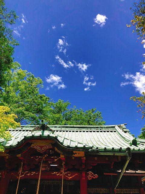 東京・赤坂氷川神社(投稿者:桃鉄子)