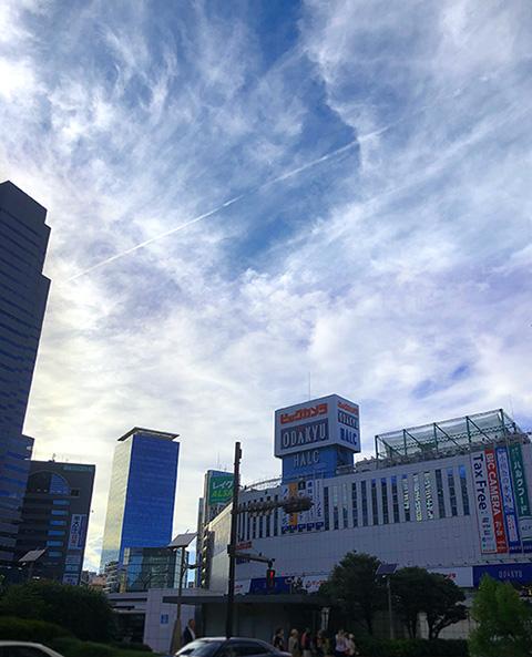 東京都・新宿(投稿者:黄色いバラ)