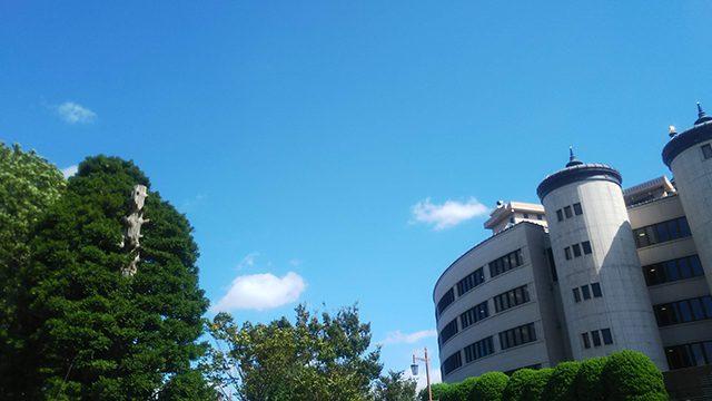 法輪閣の榧木と大聖堂(投稿者:こうちん)