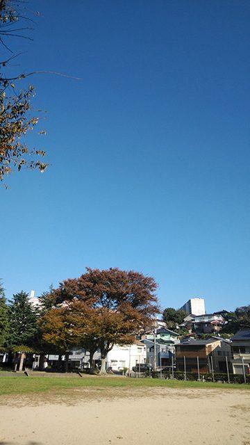 山口県下関市幸町(投稿者:下関のかめちゃん)