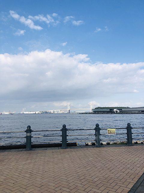 神奈川県・横浜市赤レンガ倉庫前(投稿者:桃鉄子)