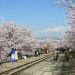 京都市 蹴上インクライン(投稿者:ウエッタくん)