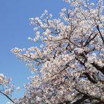 広島県福山市(投稿者:橘高宏治)