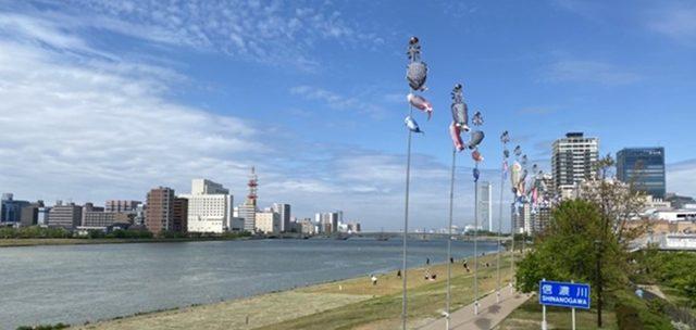 信濃川(投稿者:PGの相方)