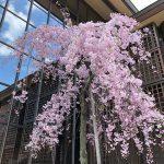 京都教会(投稿者:竜馬ファン)
