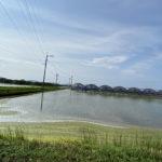 福岡県糸島市(投稿者:saki)