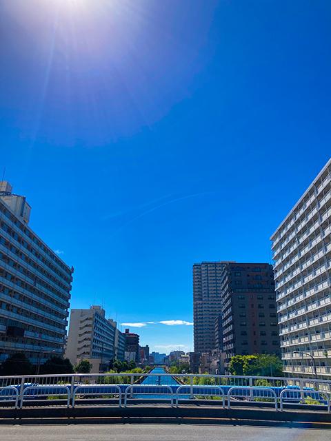 江東区 小名木(投稿者:のぼろぎく)