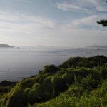 山口県下関市彦島老いの山公園(投稿者:下関のかめちゃん)