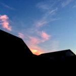 世田谷区南烏山にて(投稿者:YUJI)