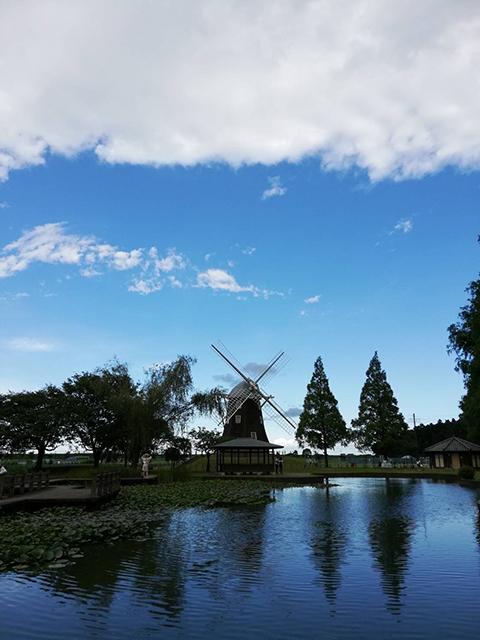 千葉県(投稿者:ストロー)
