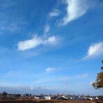 愛知県名古屋市(投稿者:ひとみ)