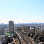 北区桜の飛鳥山(投稿者:有賀通雄)