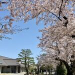 名古屋西教会(投稿者:らすかる)