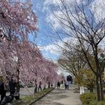 喜多方市旧日中線跡地(投稿者:coco.saki)