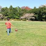 いつもの公園(投稿者:伊藤順朗)