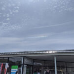 浜名湖にて(投稿者:kikoさん )