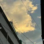 日野駅前(投稿者:ブン太 )